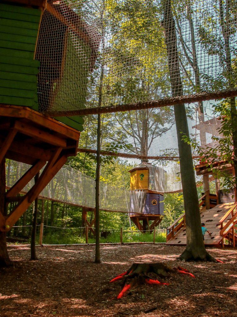 Spielen im Wald - Kanada mit Kindern