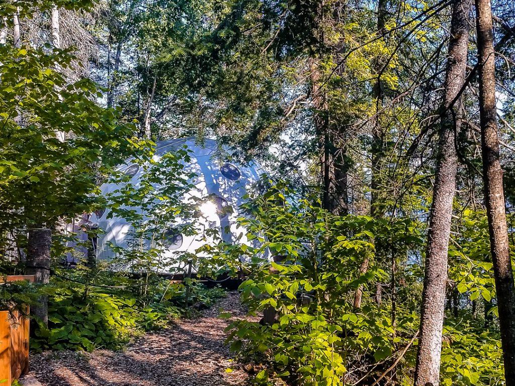 Dome mitten im Wald