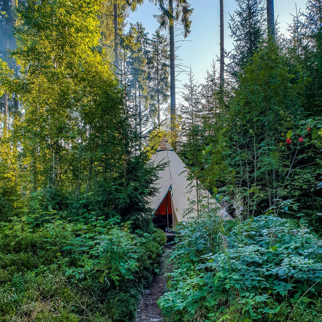 Mitten im Wald - das Familien Tipi Paul im Schwarzwaldcamp