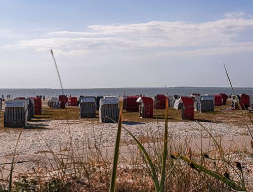 Strandkörbe am Familienstrand Bensersiel